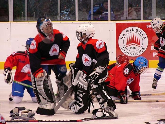 Boskovice hokej